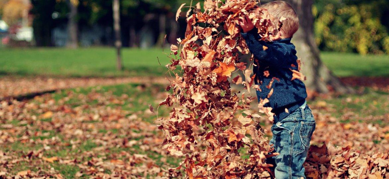 kid_leaves