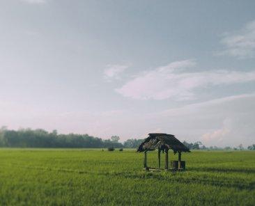 Photo by Qang Jaka on Unsplash
